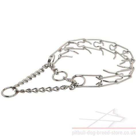 pinch collar for dogs pinch collar for large dogs collar new 163 24 90