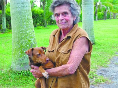 free puppies miami born free pet shelter is home to abandoned dogs miami s community news