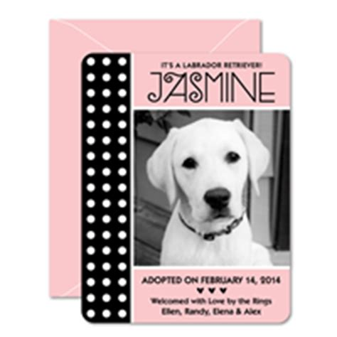 new puppy announcement personalized new puppy announcements best friends studios