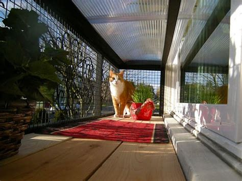 cat patio catio spaces a patio for your cat rismedia s housecall