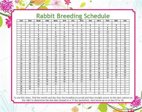 rabbit color calculator rabbit due date calculator mad hatter rabbits
