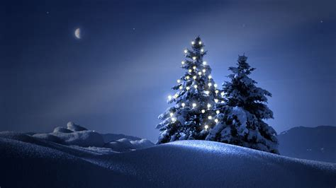 christmas trees in the snow wallpaper 4058