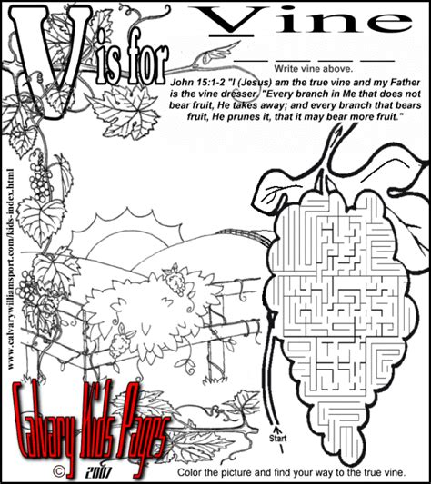 Coloring Page Vine And Branches by Jesus Is The Vine Maze Printable Children S Church
