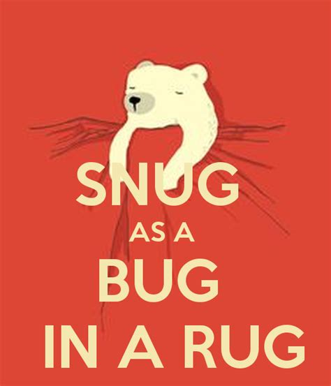 snug as a bug in a rug keep calm and carry on image