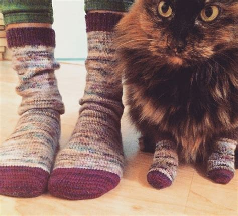 twinsies with your cat meowoof