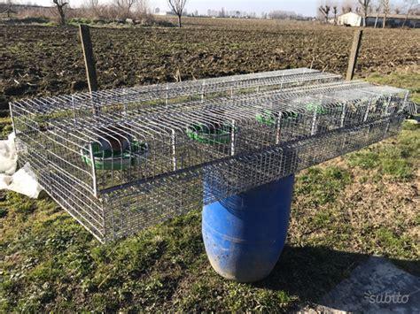 gabbia conigli usata gabbia per conigli con recinto posot class