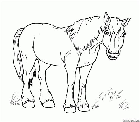 big coloring pages of horses coloring page toy horse