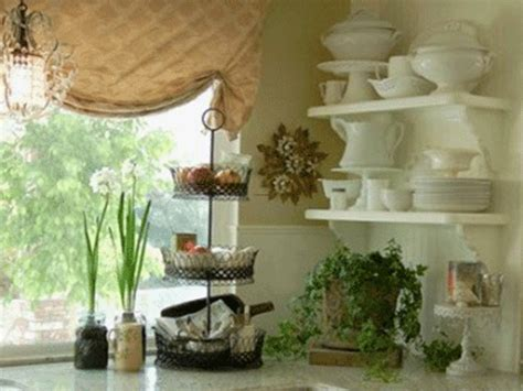 how to decorate kitchen with green plants and save money
