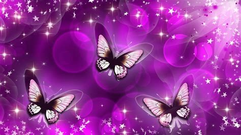 butterflies full hd wallpaper and background image cute butterfly backgrounds wallpaper cave