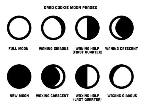 coloring pages of the moon s phases 25 best images about moon phases names on pinterest
