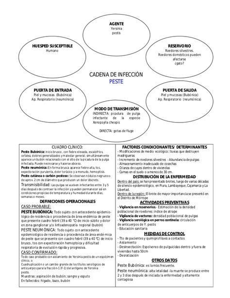 cadena epidemiologica psitacosis cadenas epidemiol 243 gicas de principales enfermedades