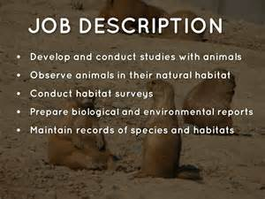 Wildlife Biologist Description by Zoologist And Wildlife Biologist By Elsa Doherty
