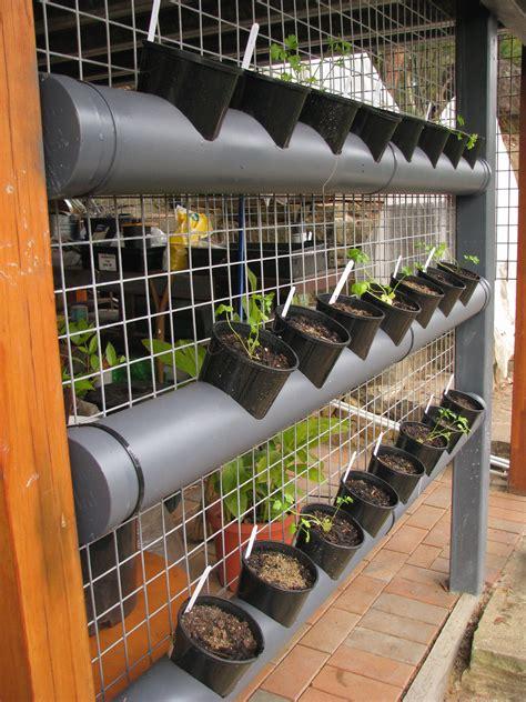 entrancing vertical vegetable garden bangalore