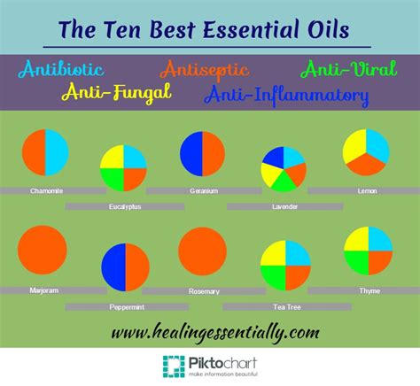 The Best Antifungals Essential Oils For Detoxing Aflatoxins by Free Chart Of The Best Essential Oils Properties