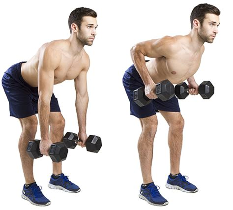 bench over row hiit exercise how to do bent over rows hiit academy
