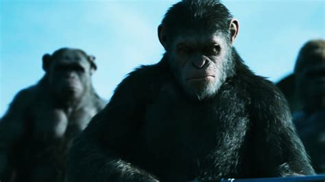 War For The Planet Of The Apes 2017 Dvd war for the planet of the apes caesar 2017 wallpaper 11827 baltana