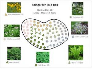 raingarden in a box designs prior lake spring lake watershed district