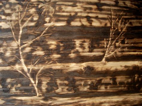 Wood Burnt Plywood Floor Houses Flooring Picture Ideas