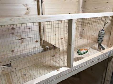 Guinea Pig Shed Ideas by The 25 Best Rabbit Shed Ideas On Cages For Rabbits Rabbit Enclosure And Bunny Hutch