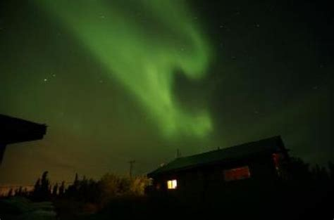 northern lights forecast fairbanks fairbanks borealis northern lights tripadvisor