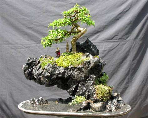 Gartengestaltung Bonsai Baum Bonsai Pflege Bonsai Bonsai Rock Garden