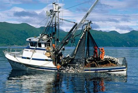 homer alaska commercial fishing boats alaska history geography state united states