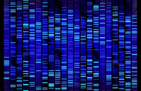 dna pattern name dna the blog of mystica