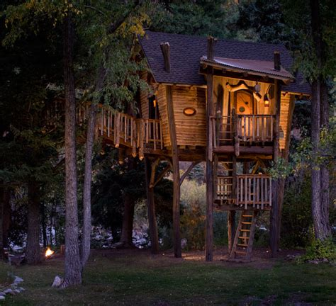 treehouse house green line architects tree house