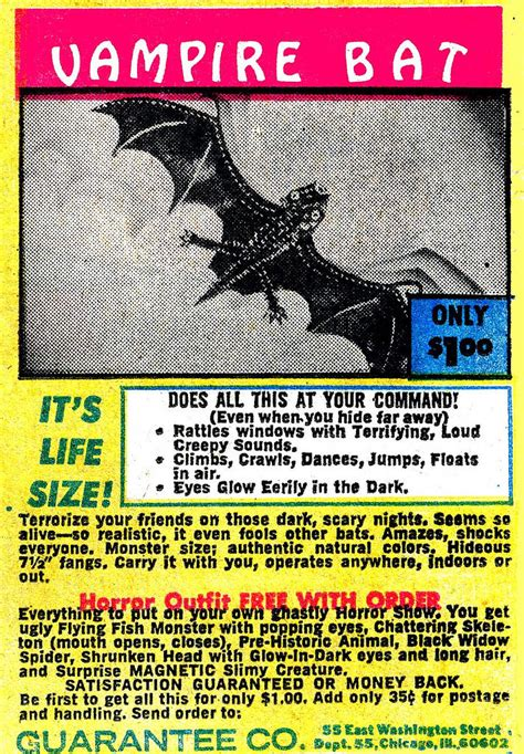 bats the history collection books mail order novelties fantastical andrew fox