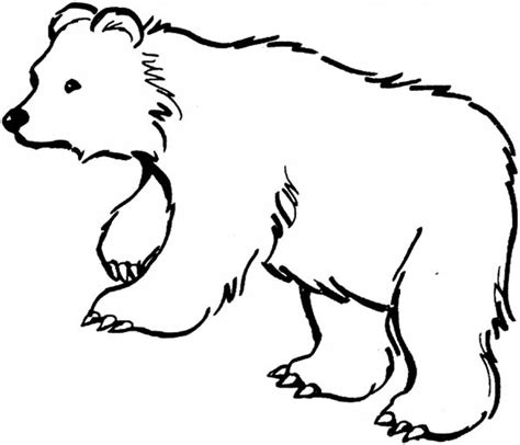 incredible and also attractive black bear coloring page