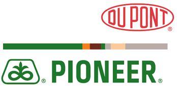 Benih Jagung Hibrida Pioneer inilah daftar perusahaan benih di indonesia berdasarkan kepemilikan saham belajartani