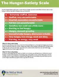 Health The Hunger Scale by Healthy Challenge Health Services