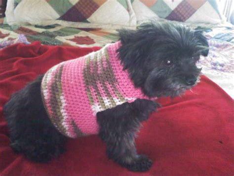 easy crochet pattern for dog coat easy dog sweater crochet pattern crochet pinterest