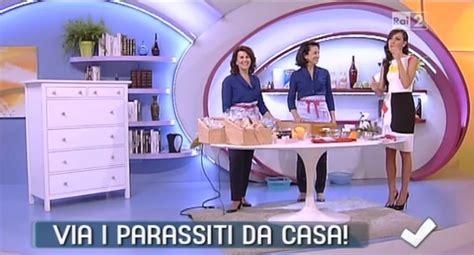 Pidocchi In Casa by Come Eliminare I Parassiti Della Casa Soluzioni Di Casa