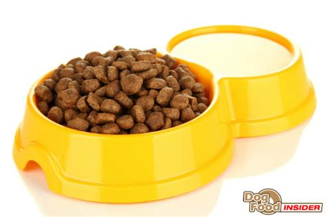 canidae puppy food canidae platinum food review ingredients breakdown