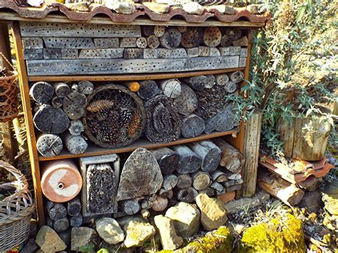 Insektenhotel Zum Selber Bauen 68 by Hollerbusch Und Kaffeek 228 Nnchen Wildbienen Und Hummeln