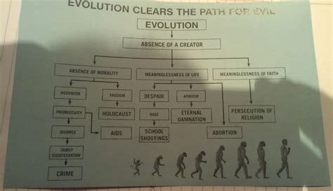 human evolution flowchart clergy letter project 171 the skeptical