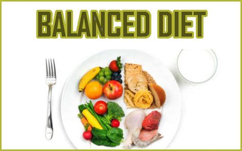 balanced diet for weight loss fitnessmonster net