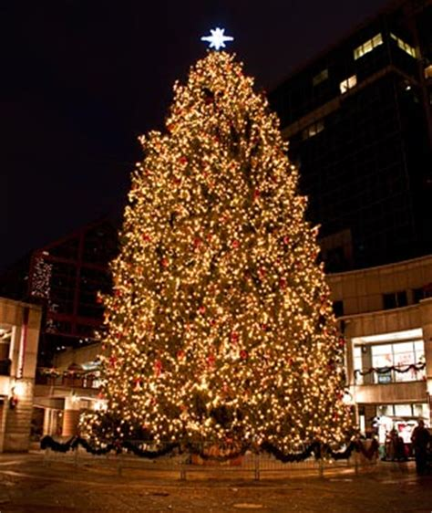 faneuil hall tree lighting with the boston pops 11 23 13
