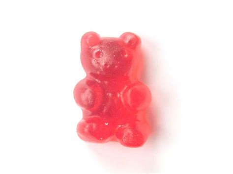 can dogs eat gummy bears vegan gummi recipe publish with glogster