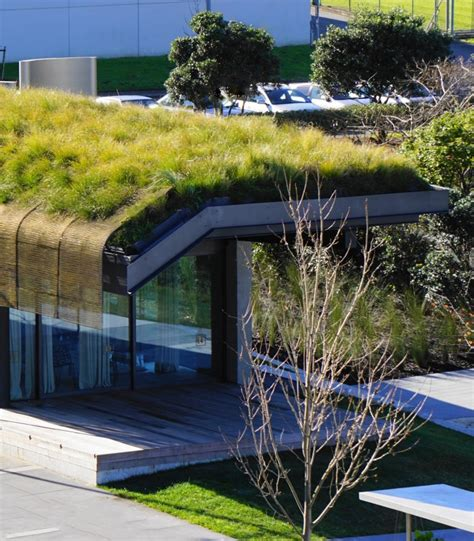 liveroof green roof systems liveroof 174 green roof system stormwater360
