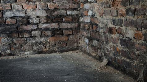 damp proofing  garage   treat damp walls
