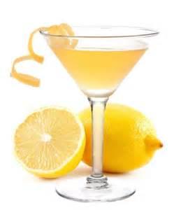 vodka summer cocktails top 10 the fervent shaker