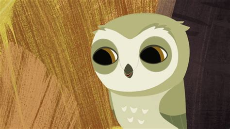 Js Owl Hp Sleep puffin rock gifs find on giphy