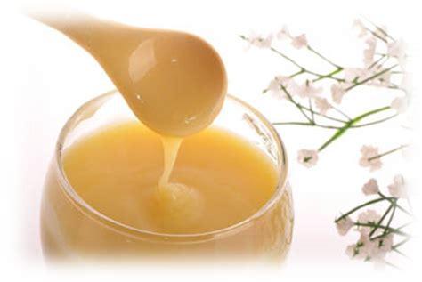 Bumble Bee Jelly methylsulfonylmethane msm dmso hyaluronic acid msm wholesale
