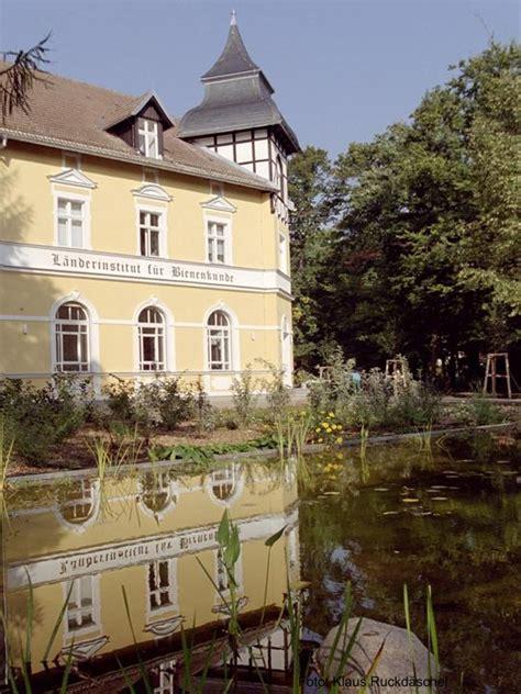 haus neuendorf institute for bee research hohen neuendorf e v