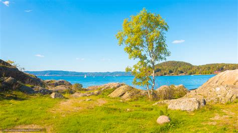 imagenes de paisajes naturales otoño tlcharger fond d ecran rivi 232 re rocks arbre norv 232 ge