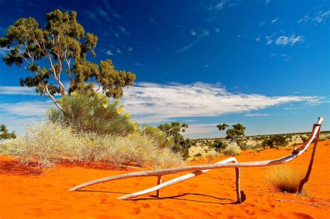 sand dune country in the australian outback xplore