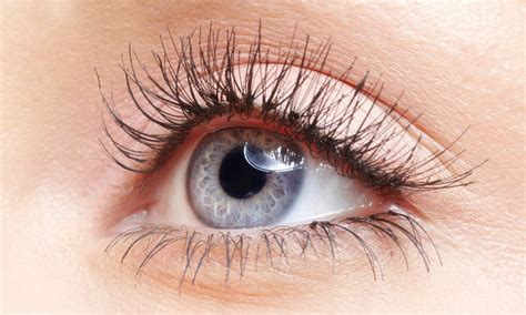 Silk Eyelash Extension and beyond up to 63 remuera auckland groupon