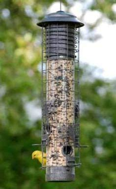 1000 images about squirrel proof bird feeders on